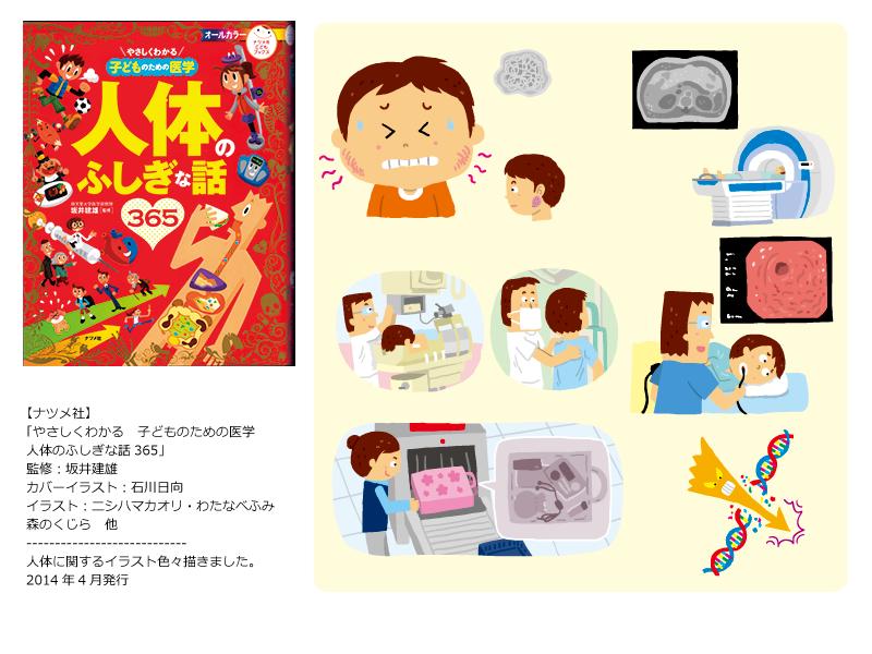 【人体イラスト】ナツメ社『やさしくわかる 子どものための医学 人体のふしぎな話365』